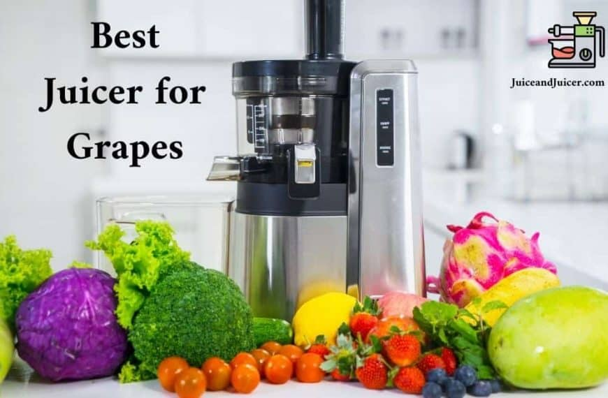 10 Best Juicer for Grapes- #6 will Make You Surprised