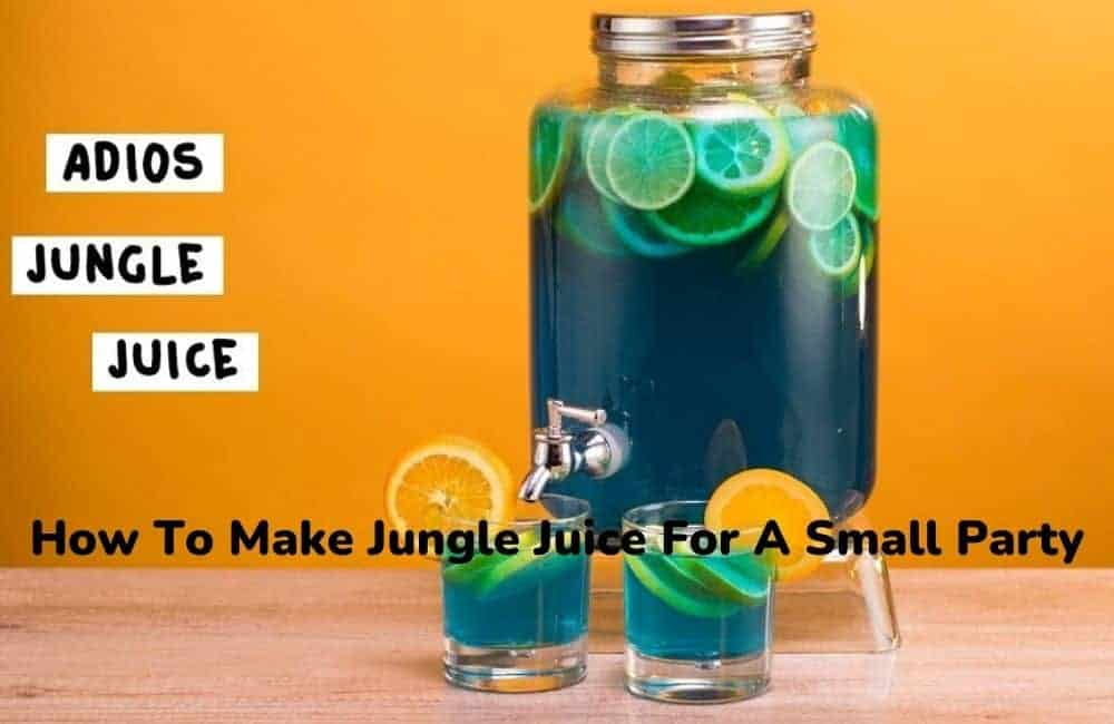 How To Make Jungle Juice For A Small Party